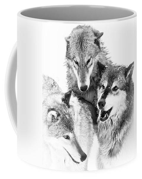 Wolves Coffee Mug featuring the photograph Wolf Triplets by Athena Mckinzie