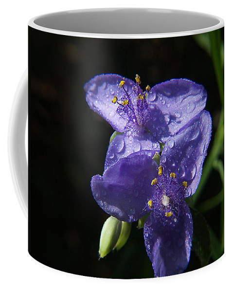 Weed Coffee Mug featuring the photograph Wonderful Weed by Bob Johnson