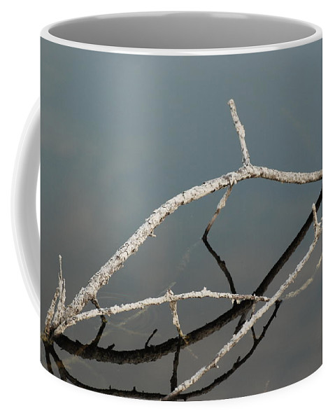 Blue Coffee Mug featuring the photograph Wood In The Water by Rob Hans