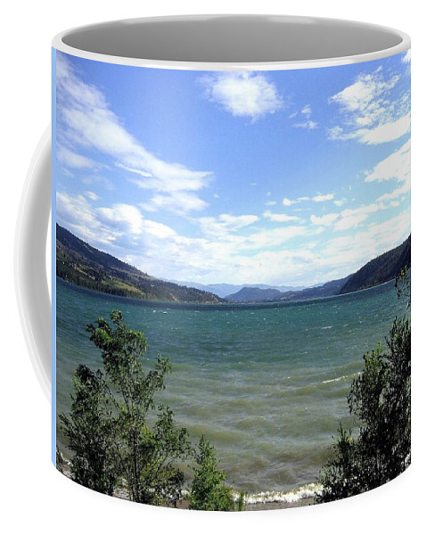 Wood Lake Coffee Mug featuring the photograph Wood Lake In Summer by Will Borden