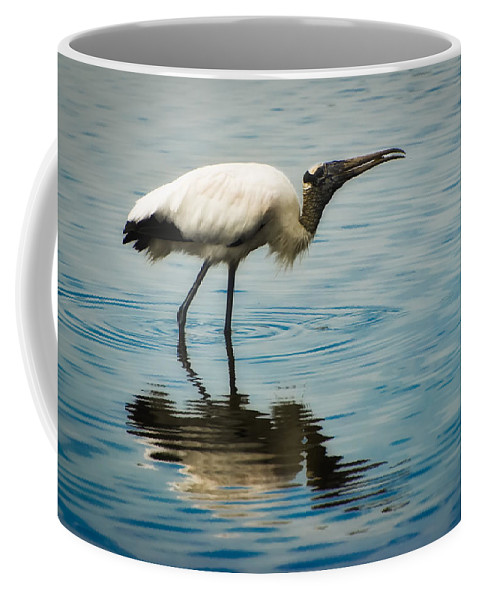 Stork Coffee Mug featuring the photograph Wood Stork by Rich Leighton