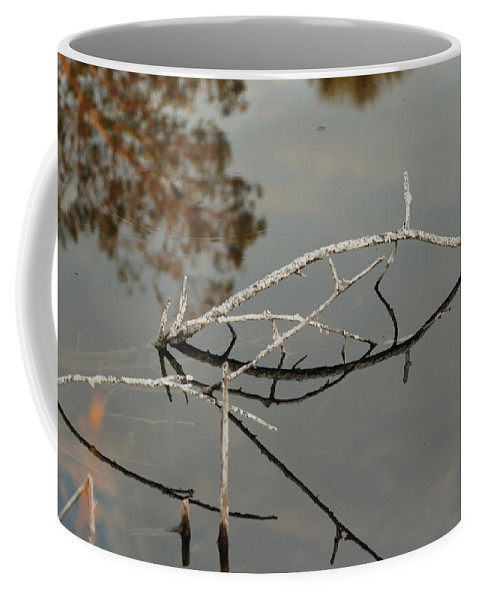 Pink Coffee Mug featuring the photograph Wooden Bridge In Color by Rob Hans