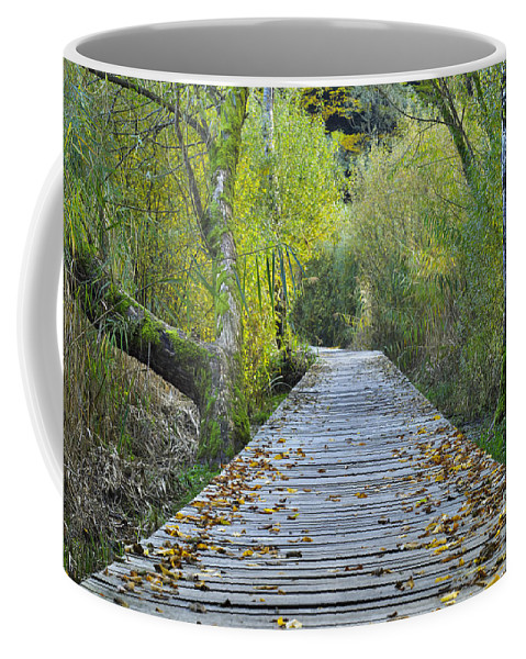 Path Coffee Mug featuring the photograph Wooden Path by Ivan Slosar