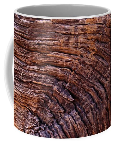 Wood Coffee Mug featuring the photograph Woodgrain by Jim Cole
