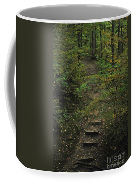 Wood Coffee Mug featuring the photograph Woodland Steps by Michelle Hastings