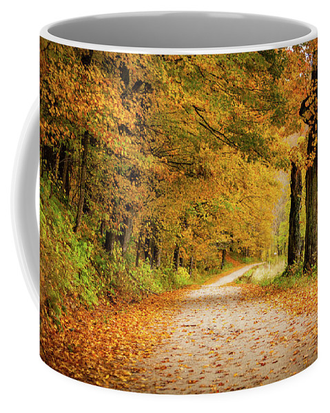 Bridges Coffee Mug featuring the photograph Woodstock by Jason Dodd