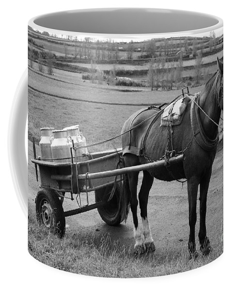 Cart Coffee Mug featuring the photograph Work Horse And Cart by Gaspar Avila