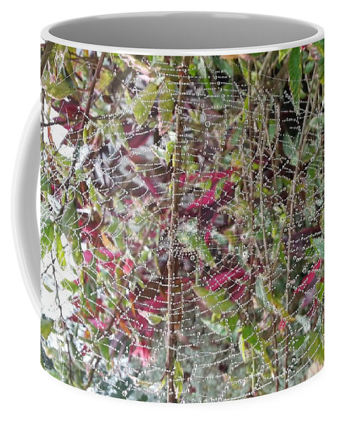 Spider Web Coffee Mug featuring the photograph WWW by Michelle S White