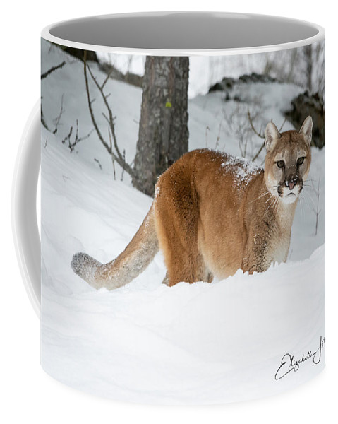 Mountain Lion Coffee Mug featuring the photograph Wyoming Wild Cat by Elizabeth Waitinas