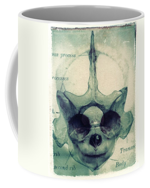Polaroid Transfer Coffee Mug featuring the photograph X Ray Terrestrial No. 13 by Jane Linders