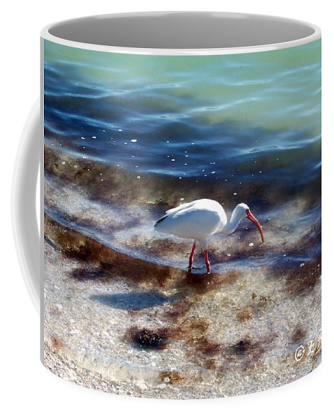 Bird Coffee Mug featuring the photograph Yay Seaweed by Elizabeth Klecker