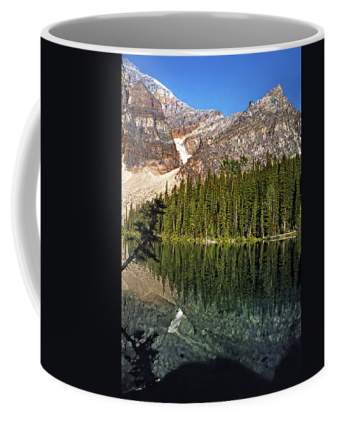 Canada Coffee Mug featuring the photograph Yearnings by Steve Harrington