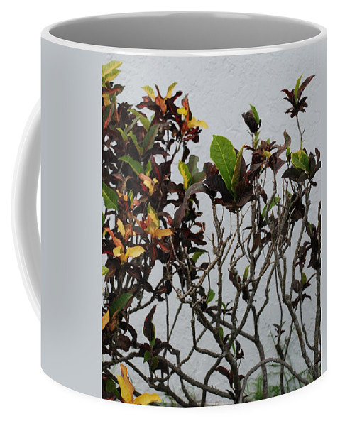 Macro Coffee Mug featuring the photograph Yellogreen by Rob Hans