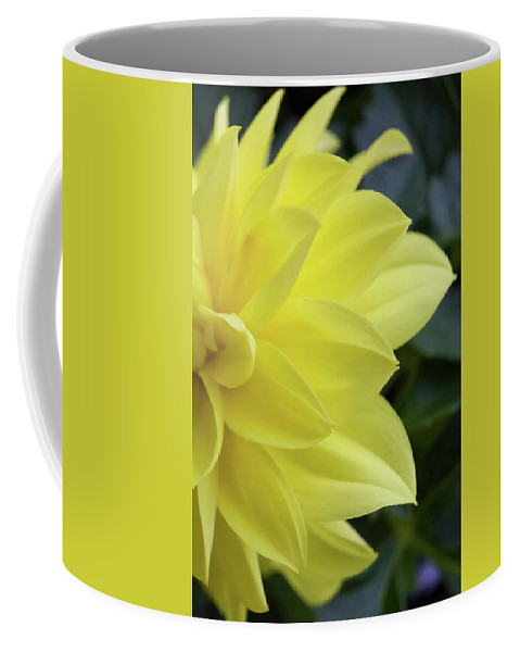 Art Coffee Mug featuring the photograph Yellow by Alan Look