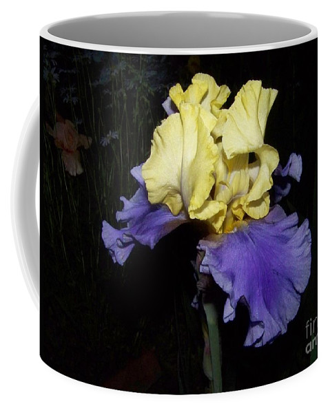 Iris Coffee Mug featuring the photograph Yellow And Blue Iris by Kathy McClure