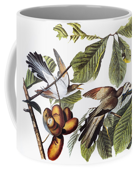 1827 Coffee Mug featuring the photograph Yellow-billed Cuckoo by Granger
