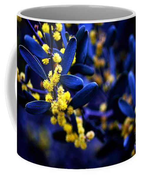 Clay Coffee Mug featuring the photograph Yellow Bursts In Blue Field by Clayton Bruster