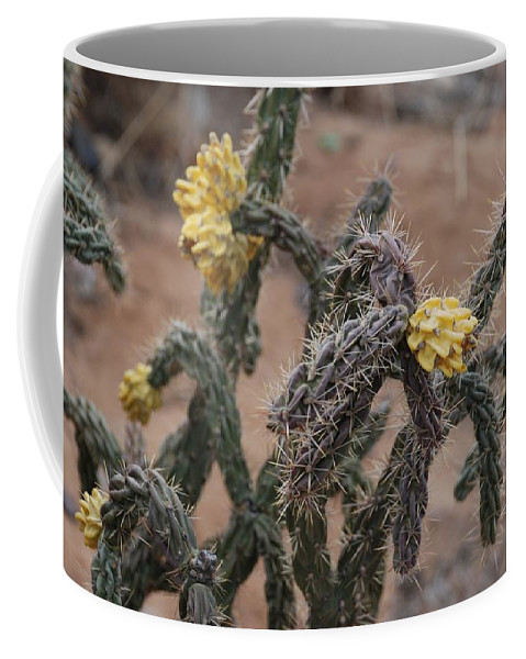 Cactus Coffee Mug featuring the photograph Yellow Cactus by Rob Hans