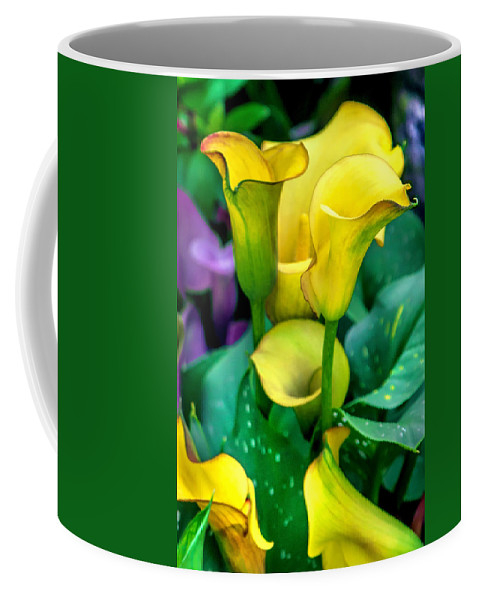 Spring Flowers Coffee Mug featuring the photograph Yellow Calla Lilies by Az Jackson
