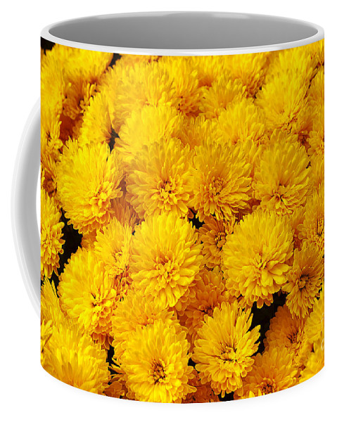Flower Coffee Mug featuring the photograph Yellow Chrysanthemums by Louise Heusinkveld