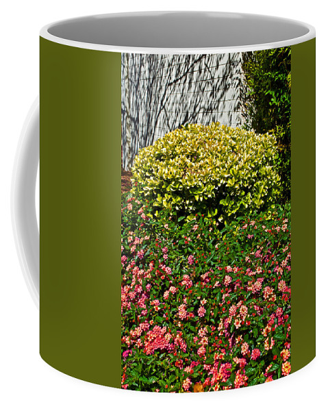Yellow Coleus And Lantana At Pilgrim Place In Claremont Coffee Mug featuring the photograph Yellow Coleus And Lantana At Pilgrim Place In Claremont-california by Ruth Hager