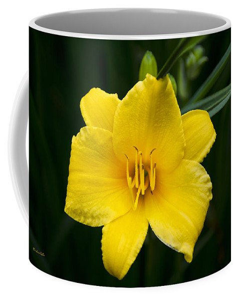 Daylily Coffee Mug featuring the photograph Yellow Daylily Flower by Christina Rollo