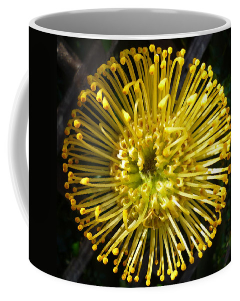 Yellow Coffee Mug featuring the photograph Yellow by Dianne Pettingell