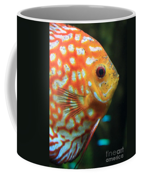 Carols Cards Coffee Mug featuring the greeting card Yellow Fish Profile by Carol Groenen