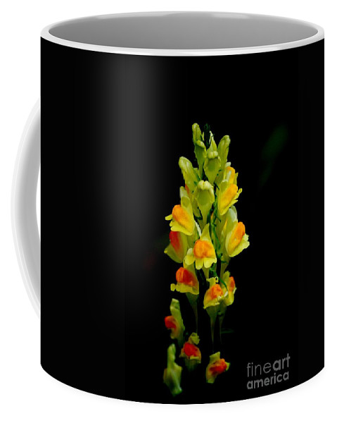 Digital Photograph Coffee Mug featuring the photograph Yellow Floral 7-24-09 by David Lane