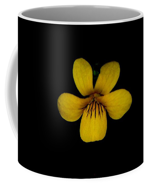 Landscape Coffee Mug featuring the photograph Yellow Flower 1 by David Lane