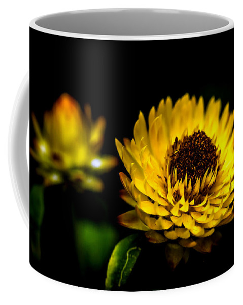 Agriculture Coffee Mug featuring the photograph Yellow Flower 5 by Jijo George