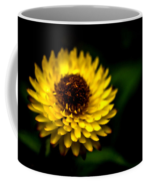 Agriculture Coffee Mug featuring the photograph Yellow Flower 6 by Jijo George