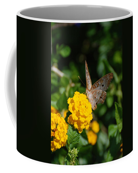 Butterfly Coffee Mug featuring the photograph Yellow Flower Brown Fly by Rob Hans
