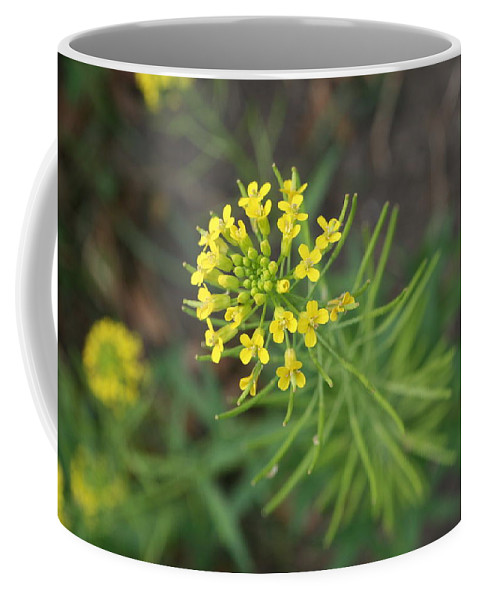 Yellow Flower Coffee Mug featuring the photograph Yellow Flower Weed by Julie Kindt