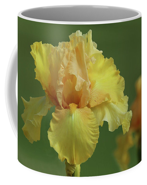 Flora Coffee Mug featuring the photograph Yellow Iris by Joy Schmitz