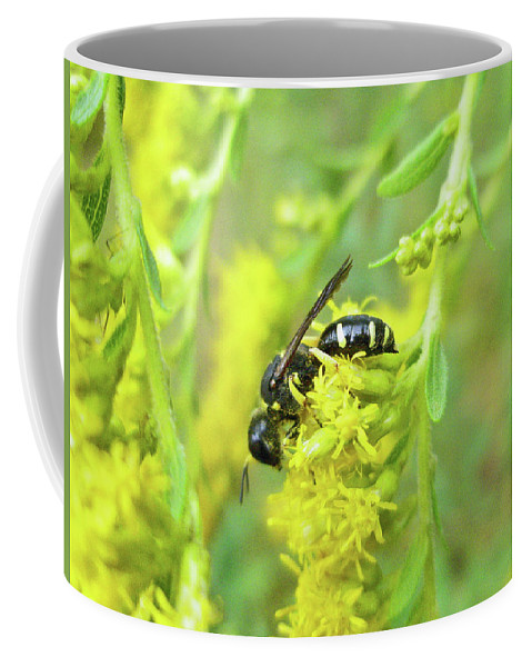 Wasp Coffee Mug featuring the photograph Yellow Jacket by Mother Nature