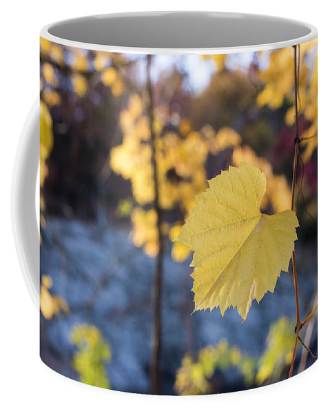 Newton Coffee Mug featuring the photograph Yellow Leaf Newton Upper Falls Fall Foliage by Toby McGuire