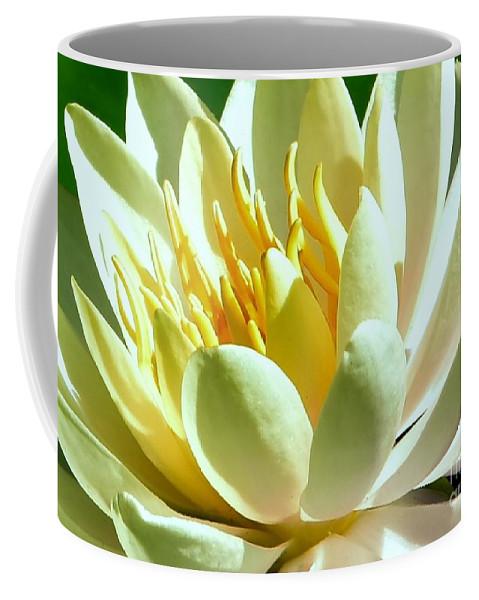 Heal Coffee Mug featuring the photograph Yellow Lily Burst by Lisa Renee Ludlum
