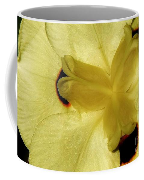Yellow Coffee Mug featuring the photograph Yellow Maze by Lisa Renee Ludlum