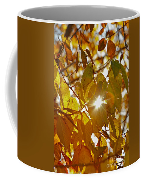 Leaves Coffee Mug featuring the photograph Yellow by Rick Monyahan