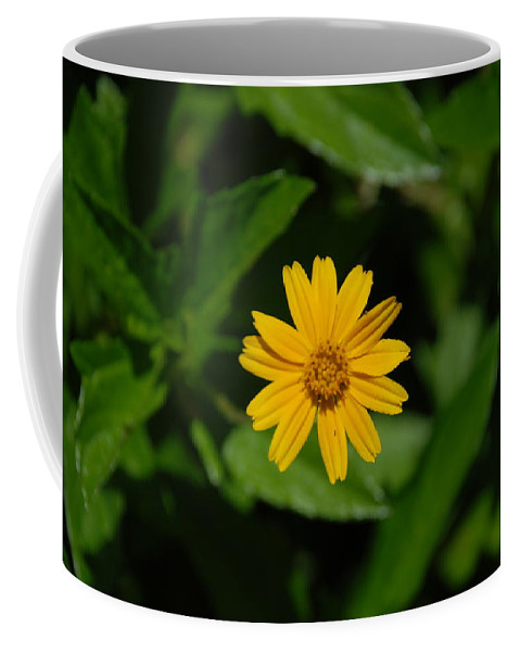 Macro Coffee Mug featuring the photograph Yellow by Rob Hans