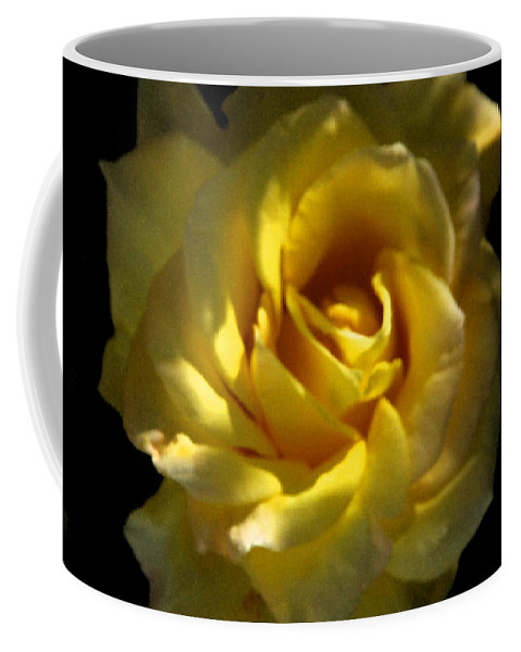 Yellow Coffee Mug featuring the photograph Yellow Rose by Carol Eliassen