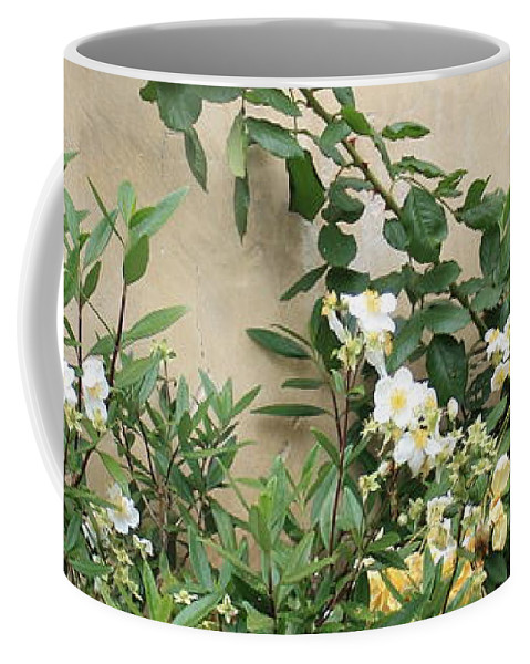 Yellow Roses Coffee Mug featuring the photograph Yellow Roses And Tiny Window At Carmel Mission by Carol Groenen
