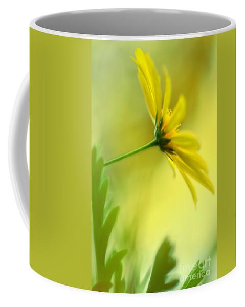 Yellow Spring Daisy Abstract Coffee Mug featuring the photograph Yellow Spring Daisy Abstract By Kaye Menner by Kaye Menner