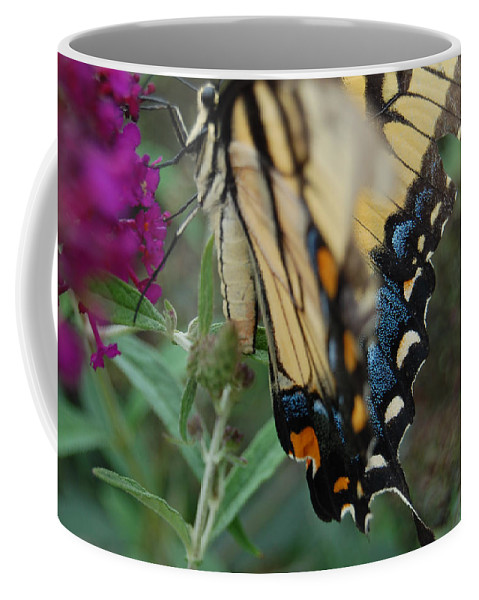 Butterfly. Yellow Coffee Mug featuring the photograph Yellow Swallow by Robert Meanor