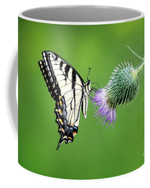 Butterfly Coffee Mug featuring the photograph Yellow Swallow Tail 2 by Todd Bielby