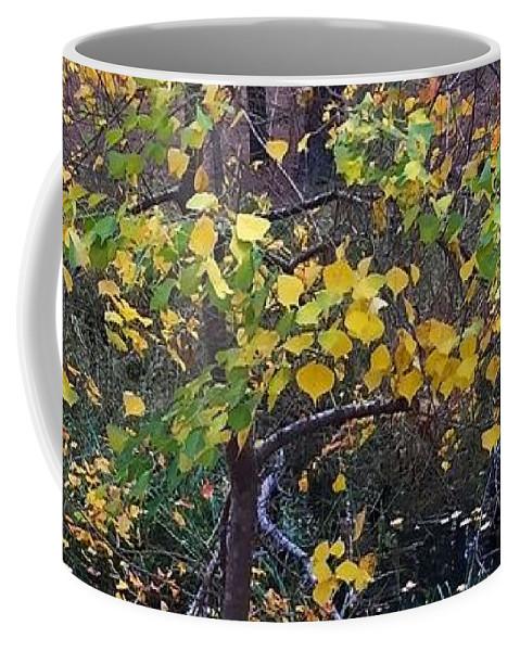 Tree Coffee Mug featuring the photograph Yellow Tree by Vonda Drees