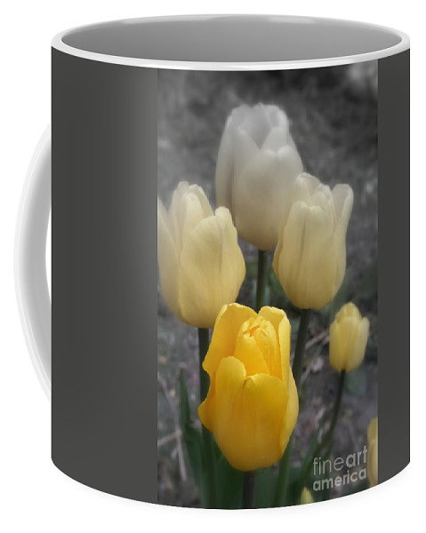 Selective Coloring Coffee Mug featuring the photograph Yellow Tulips 2 by Kay Novy