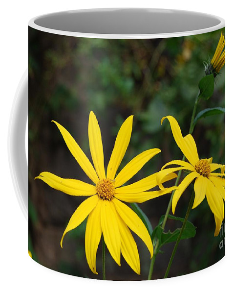 Flower Coffee Mug featuring the photograph Yellow Wild Flower by Eric Liller