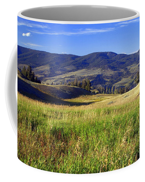 Yellowstone National Park Coffee Mug featuring the photograph Yellowstone Landscape 3 by Marty Koch